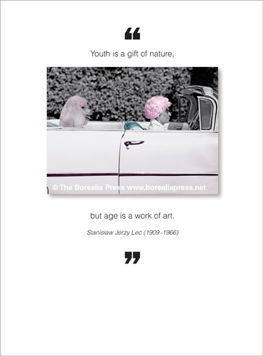 Borealis Press Greetings Cards And Gifts
