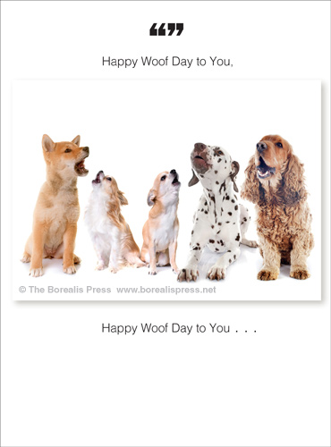 Birthday Pets Cards